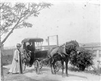 Image - photo - Horse and carriage, Preston [PHS]